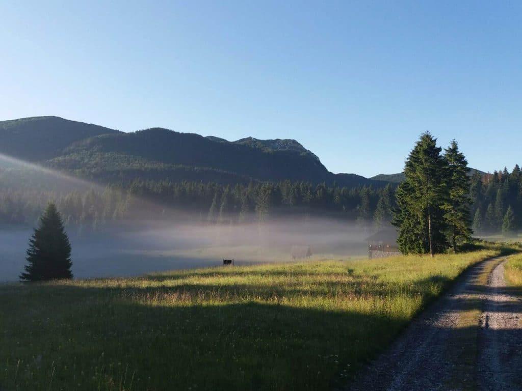 Jutarnja magla na planini Risnjak