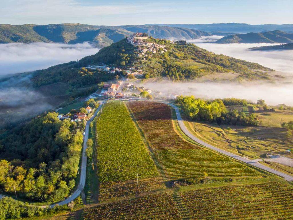 Pogled iz zraka na Motovun i istarske vinograde