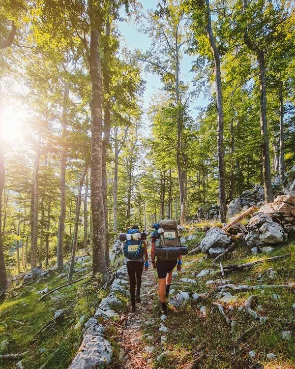 Hodanje po planinarskim stazama