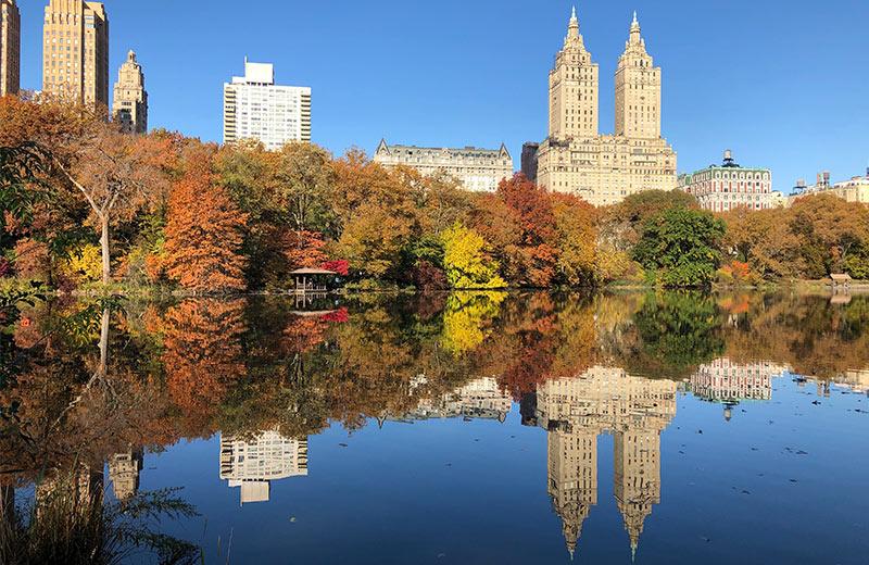Najpoznatiji svjetski park ima ključnu ulogu u svakodnevnom životu njujorškog stanovništva