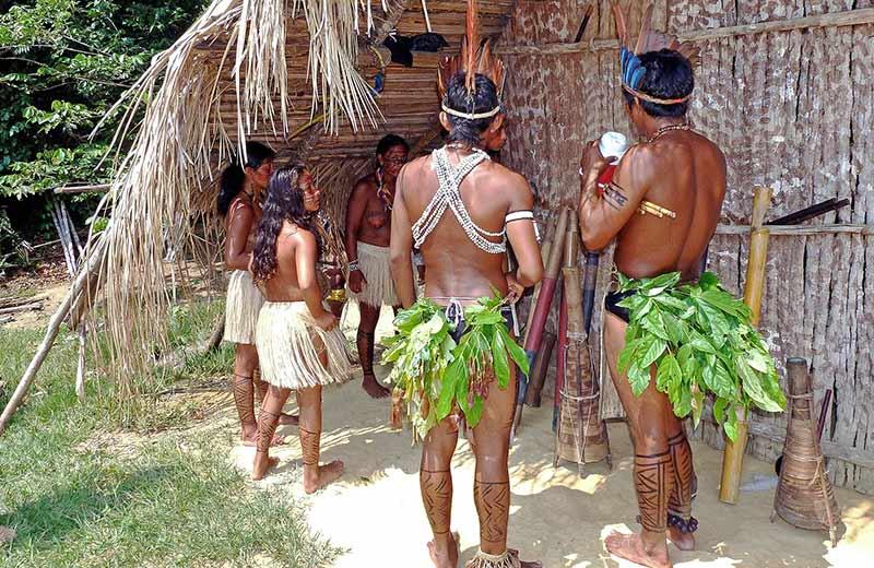 Zelena pluća svijeta: Ilegalne sječe i trgovci drogom ugrožavaju brojna amazonska plemena