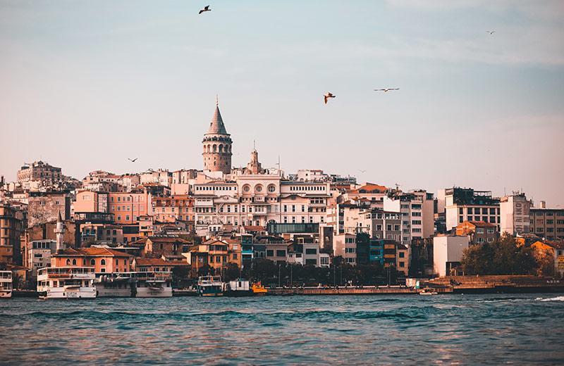 Istanbul – Grad u kojem su mačke kraljice, a ljudi samo njihove sluge