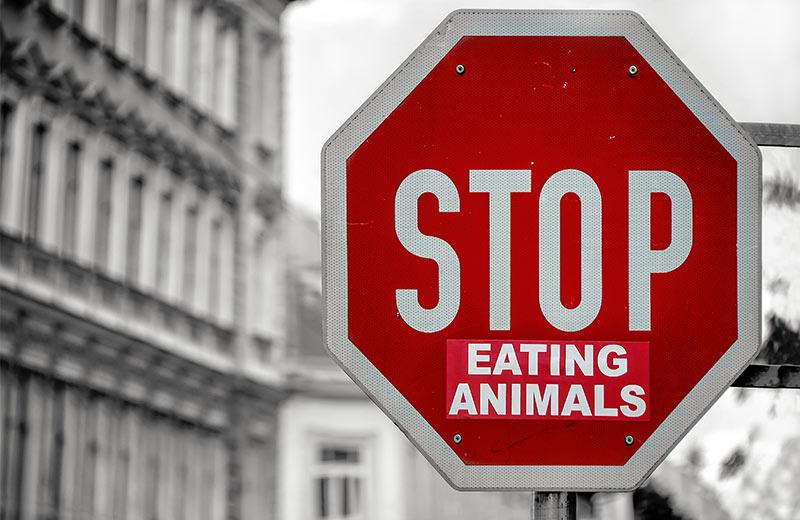 Kultura veganske prehrane: Što se krije iza rastućeg trenda plant-based prehrane?