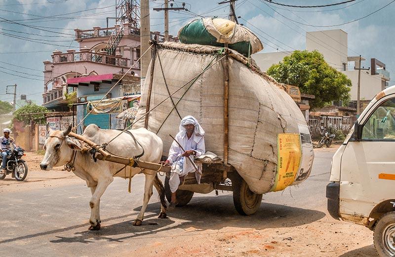 Život u Indiji - Zemlja velikih različitosti i suprotnosti