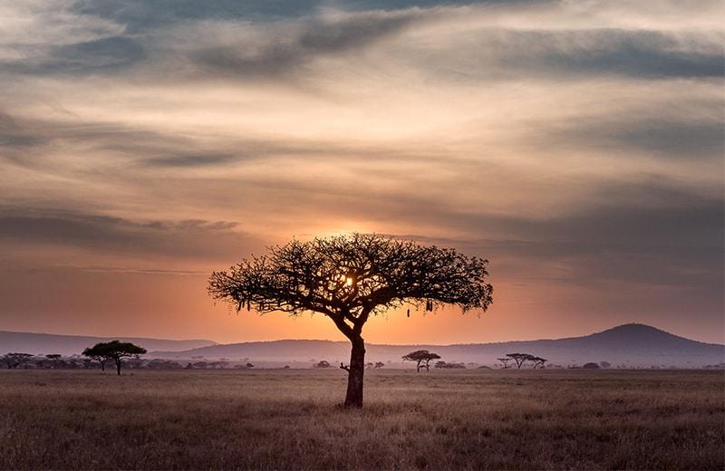 Kraljica ljepota i divljine: Upoznajte nevjerojatne prirodne atrakcije u Africi