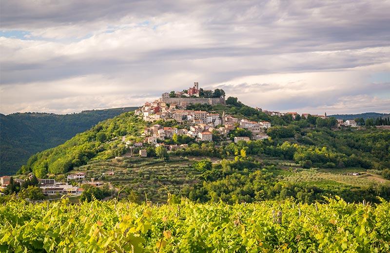 Najljepše hrvatske vinske destinacije: hedonistički izlet uz dobru kapljicu