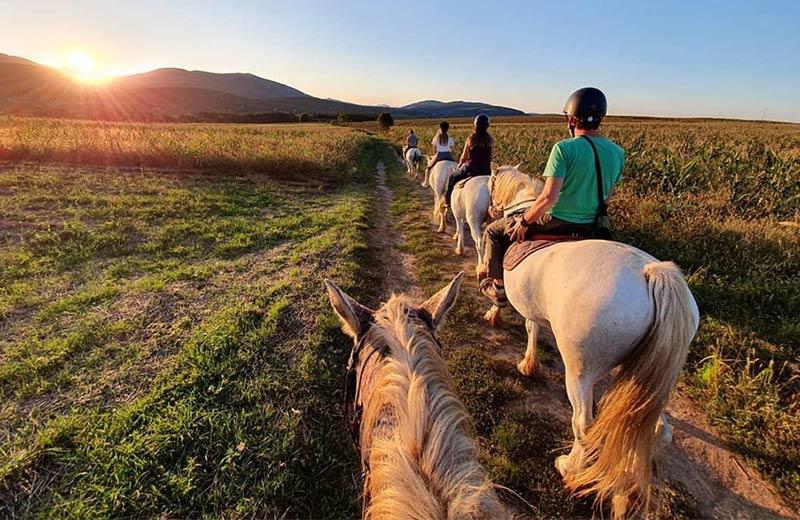 Jahanje konja u Hrvatskoj