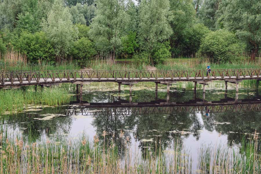 Park prirode Kopački rit