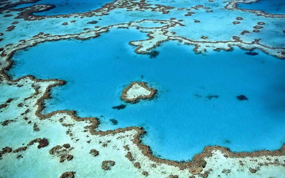 Veliki koraljni greben