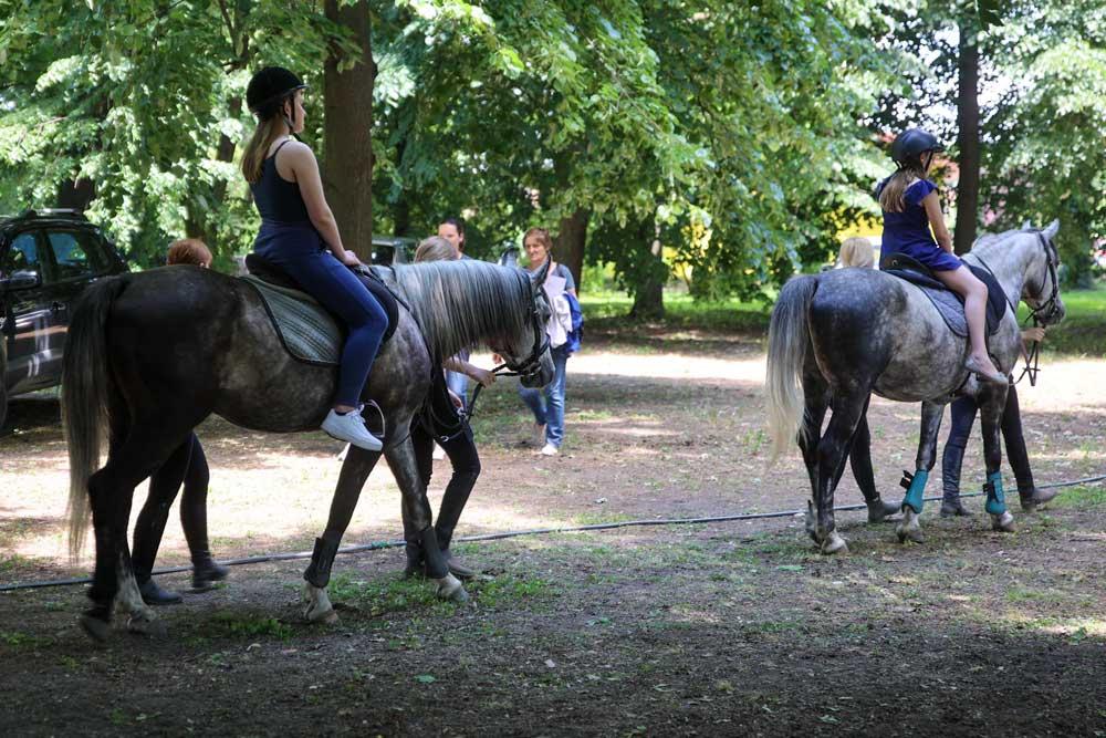 Jahanje konja u Baranji