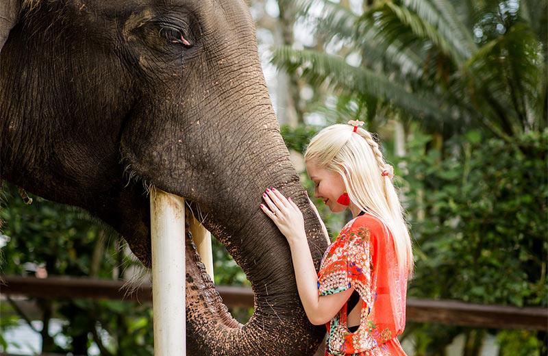 Jahanje slonova